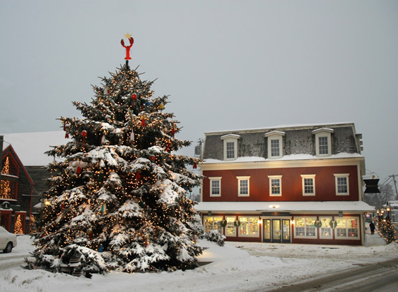 kennebunkport prelude tree in dock square