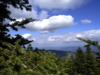 Atop Mount Mansfield (user submitted)