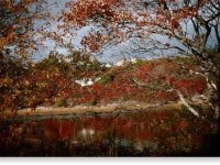 Cape Cod in Autumn (user submitted)