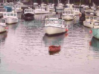 Boats in Harbor (user submitted)
