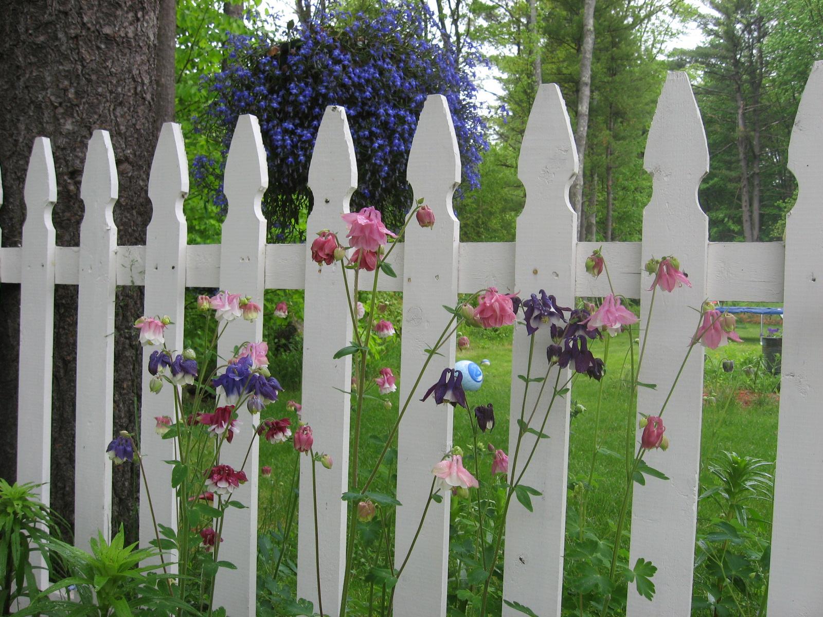 The garden of eden new england today - Where is the garden of eden today ...