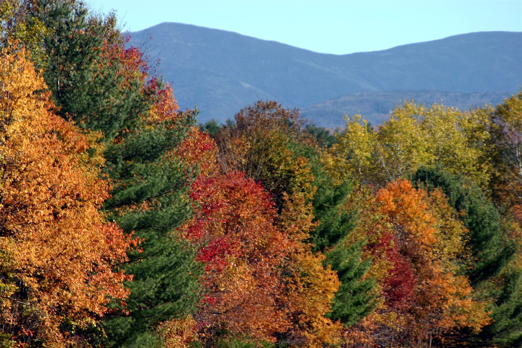 New Hampshire Foliage Driving Tour