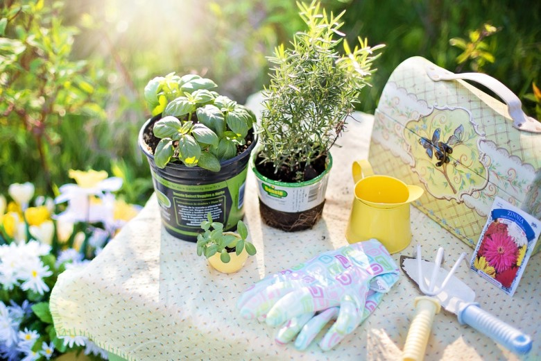 Make Your Own Plant Labels | DIY Gardening Project