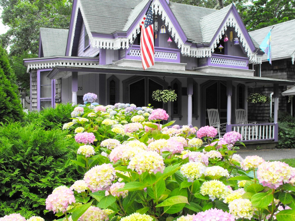 Favorite things to do in oak bluffs ma new england today things to do in oak bluffs ma publicscrutiny Images