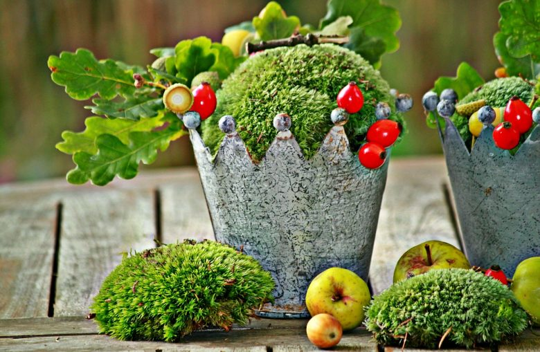 Moss Garden | Advice And Recipe To Age Pots