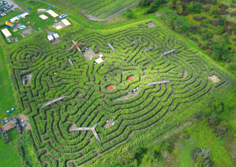 Best Corn Mazes In New England New England Today