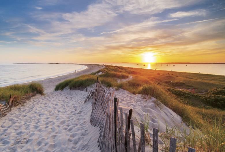Walks Worth Their Salt | New England Ocean Walks