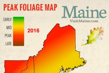 Peak Fall Foliage Map