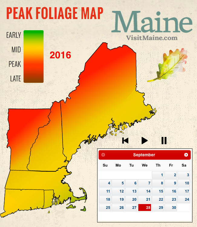 Peak fall foliage map new england today for Peak fishing times for today