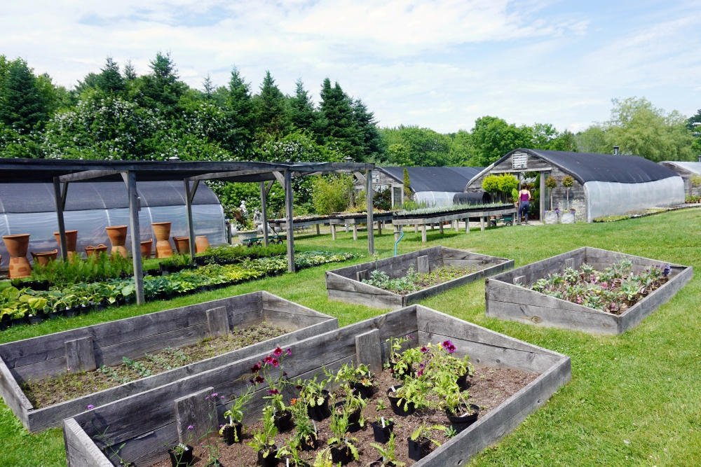 Why Snug Harbor Farm Is One of the Most Magical Places in