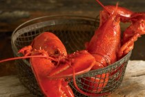 How to Cook Lobster | Tips from Bertha Nunan